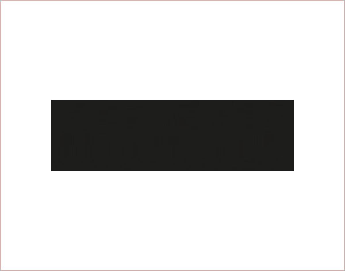 brand_mizon